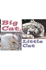 Rigby Focus Emergent  Leveled Reader Bookroom Package Nonfiction (Levels A-E) Big Cat, Little Cat-9780757855191