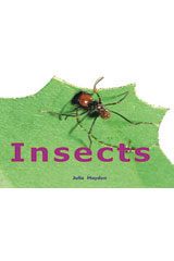 Rigby Focus Early  Leveled Reader Bookroom Package Nonfiction (Levels F-I) Insects-9780757855351