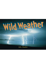 Rigby Focus Early  Leveled Reader Bookroom Package Nonfiction (Levels F-I) Wild Weather-9780757855573