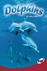 Rigby PM Plus  Individual Student Edition Ruby (Levels 27-28) Dolphins-9780757869136