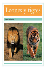 Rigby PM Coleccion  Leveled Reader 6pk turquesa (turquoise) (Levels 17-18) Leones y tigres (Lions and Tigers)-9780757881978