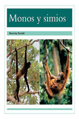 Rigby PM Coleccion  Leveled Reader 6pk turquesa (turquoise) Monos y simios (Monkeys and Apes)-9780757881985