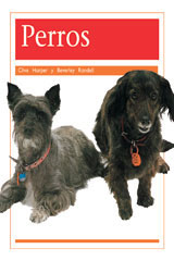 Rigby PM Coleccion  Leveled Reader 6pk anaranjado (orange) Perros (Dogs)-9780757883002