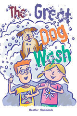 Rigby Focus Fluency  Leveled Reader Bookroom Package Nonfiction (Levels O-S) The Great Dog Wash-9780757883828