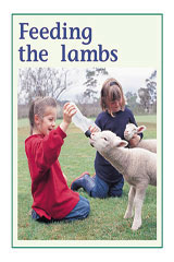 Rigby PM Plus  Leveled Reader 6pk Green (Levels 12-14) Feeding the Lambs-9780763538811