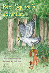 Rigby PM Plus  Individual Student Edition Green (Levels 12-14) Red Squirrel's Adventure-9780763573775