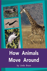 Rigby PM Plus  Individual Student Edition Purple (19-20) How Animals Move Around-9780763579463