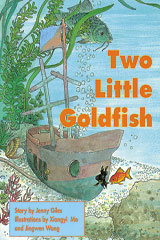 Rigby PM Collection  Leveled Reader 6pk Orange (Levels 15-16) Two Little Goldfish-9780763583460