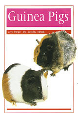 Rigby PM Collection  Leveled Reader 6pk Orange (Levels 15-16) Pets: Guinea Pig-9780763583477