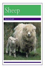 Rigby PM Collection  Leveled Reader 6pk Purple (Levels 19-20) Animals - Sheep-9780763592127