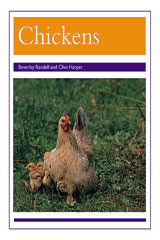 Rigby PM Collection  Leveled Reader 6pk Purple (Levels 19-20) Chickens-9780763592158