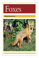 Rigby PM Collection  Leveled Reader 6pk Gold (Levels 21-22) Foxes-9780763593919