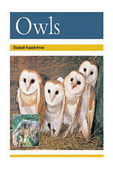 Rigby PM Collection  Leveled Reader 6pk Gold (Levels 21-22) Owls-9780763593926