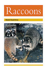 Rigby PM Collection  Leveled Reader 6pk Gold (Levels 21-22) Raccoons-9780763593940