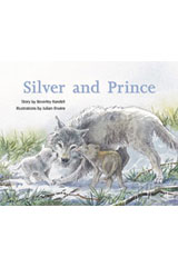 Rigby PM Collection  Leveled Reader 6pk Silver (Levels 23-24) Silver and Prince-9780763596712