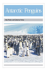 Rigby PM Collection  Leveled Reader 6pk Silver (Levels 23-24) Antarctic Penguins-9780763596859