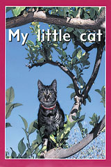 Rigby PM Plus Starters  Leveled Reader 6pk Magenta (Level 2) My Little Cat-9780763597122