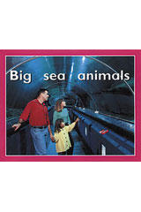 Rigby PM Plus Starters  Leveled Reader 6pk Magenta (Level 2) Big Sea Animals-9780763597146