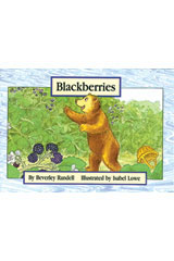 Rigby PM Platinum Collection  Individual Student Edition Yellow (Levels 6-8) Blackberries-9781418900526