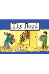 Rigby PM Platinum Collection  Individual Student Edition Green (Levels 12-14) The Flood-9781418901141