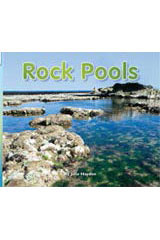 Rigby Flying Colors  Individual Student Edition Blue Rock Pools-9781418905910