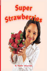 Rigby Flying Colors  Leveled Reader Bookroom Package Green Super Strawberries-9781418914769