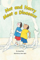 Rigby Flying Colors  Individual Student Edition Orange Nat and Harry Meet a Dinosaur-9781418915698