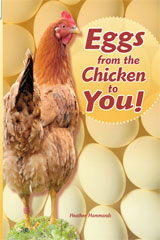 Rigby Flying Colors  Leveled Reader Bookroom Package Turquoise Eggs from Chicken to You!-9781418919627