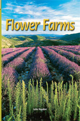 Rigby Flying Colors  Leveled Reader Bookroom Package Turquoise Flower Farms-9781418919641