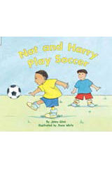 Rigby Flying Colors  Leveled Reader Bookroom Package Yellow Nat and Harry Play Soccer-9781418919900