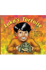 Rigby Flying Colors  Leveled Reader Bookroom Package Yellow Luka's Tortoise-9781418919948