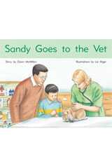 Rigby PM Stars  Individual Student Edition Blue (Levels 9-11) Sandy Goes to the Vet-9781418924423