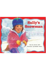 Rigby PM Stars  Leveled Reader Bookroom Package Red (Levels 3-5) Sally's Snowman-9781418924669