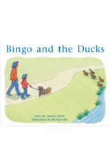 Rigby PM Stars  Leveled Reader Bookroom Package Yellow (Levels 6-8) Bingo and the Ducks-9781418924768
