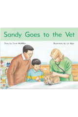 Rigby PM Stars  Leveled Reader Bookroom Package Blue (Levels 9-11) Sandy Goes to the Vet-9781418924928