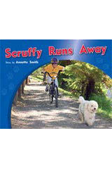 Rigby PM Photo Stories  Individual Student Edition Blue (Levels 9-11) Scruffy Runs Away-9781418925581