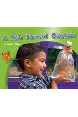 Rigby PM Photo Stories  Leveled Reader Bookroom Package Green (Levels 12-14) A Fish Named Goggles-9781418926182