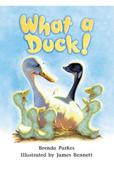 Literacy by Design  Big Book Grade 1 What A Duck!-9781418931049