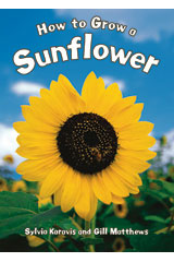 Literacy by Design  Big Book Grade 1 How To Grow A Sunflower-9781418931056