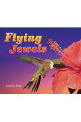 Literacy by Design  Leveled Reader 6-pack Grade 1, Level H Flying Jewels-9781418935139
