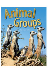 Rigby Focus Forward Leveled Reader 10pk Animal Groups