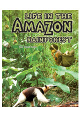 Rigby Focus Forward  Leveled Reader 10pk Life in the Amazon Rainforest-9781418978112