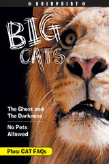 Steck-Vaughn BOLDPRINT Anthologies  Individual Student Edition Orange Big Cats-9781419023965