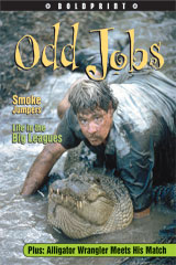 Steck-Vaughn BOLDPRINT Anthologies  Individual Student Edition Navy Odd Jobs-9781419024351