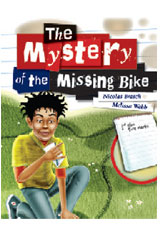Mystery of the Missing Bike