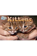 Steck-Vaughn Pair-It Turn and Learn Emergent 1  Leveled Reader Bookroom Package Kittens/It Is My Birthday, Too!-9781419047725