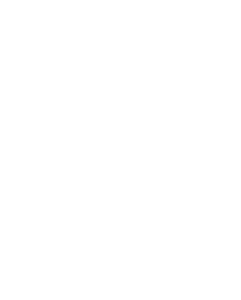 Party Certificate