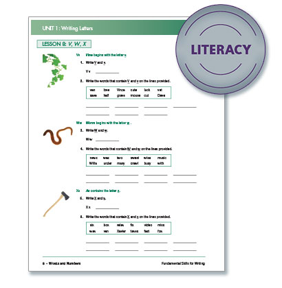 Literacy 2 - Steck-Vaughn® Fundamental Skills