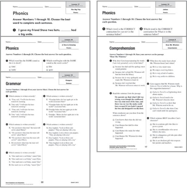 4th grade science essay questions