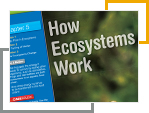 Environmental Science How Ecosystems Work